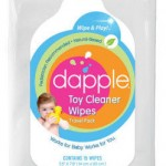 Dapple Cleaner Review