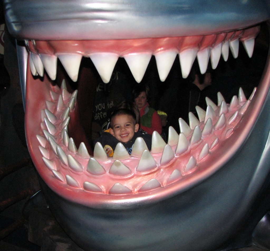 rylan at epcot