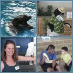 9 Tips for Maximizing Your Fun at SeaWorld San Antonio