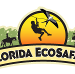Florida Ecosafaris | My First Experience Ziplining