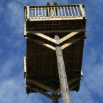 Ziplining and Florida Eco Safaris at Forever Florida