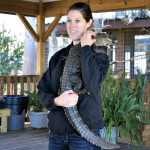 See the Everglades with Wild Florida Airboat Rides