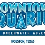 Houston Downtown Aquarium Offers Fun and Learning