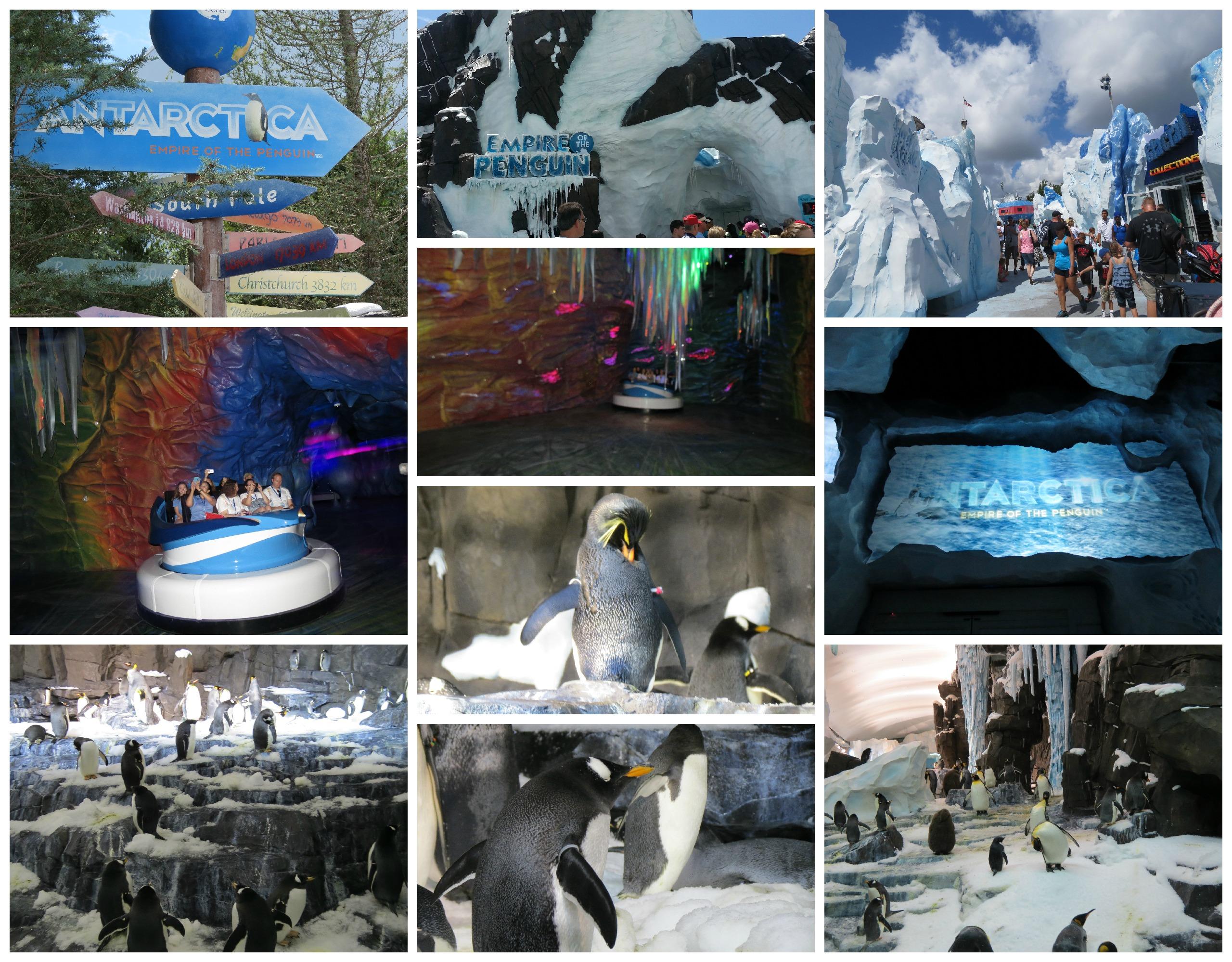 antartica exhibit at seaworld