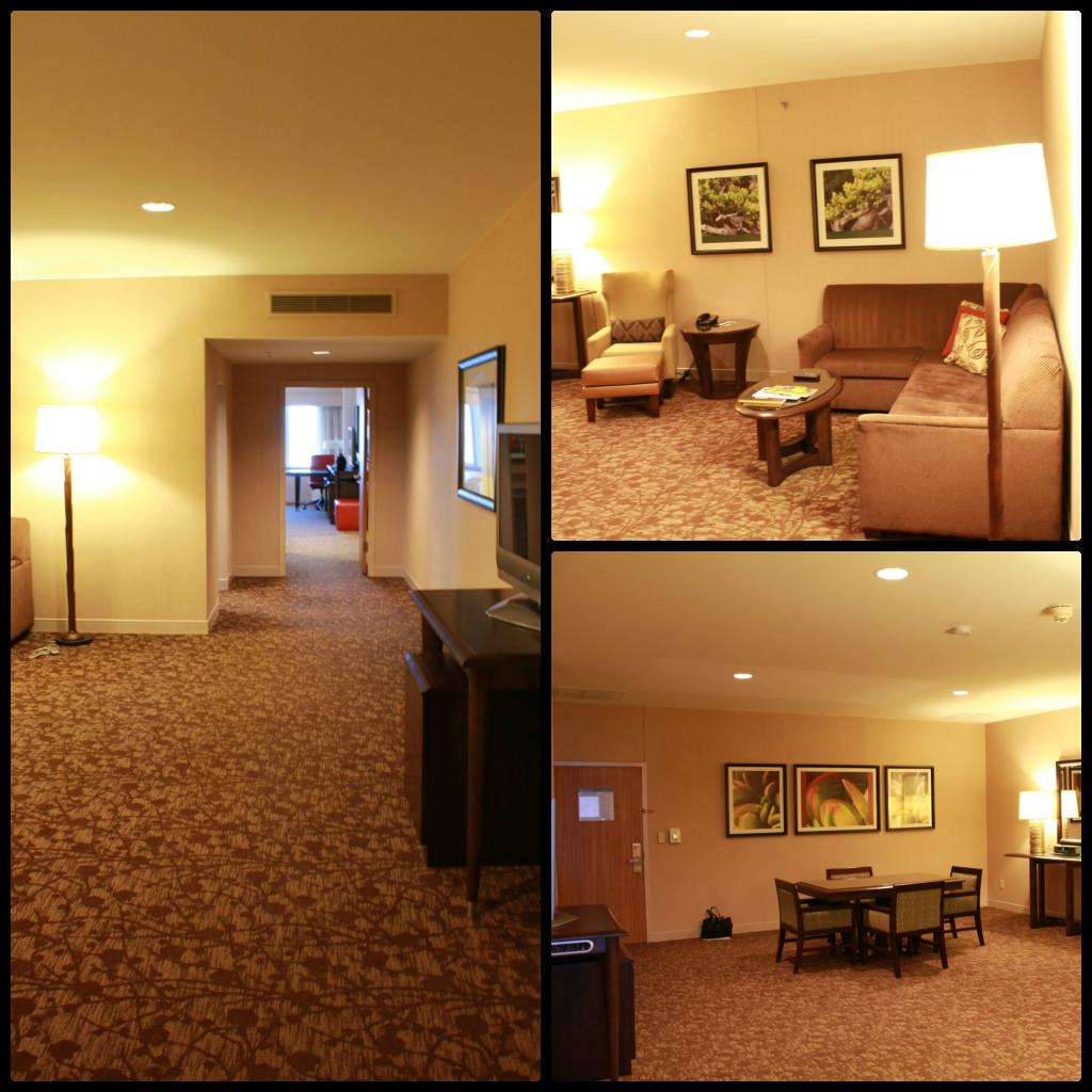 sheraton dallas hotel dallas suite