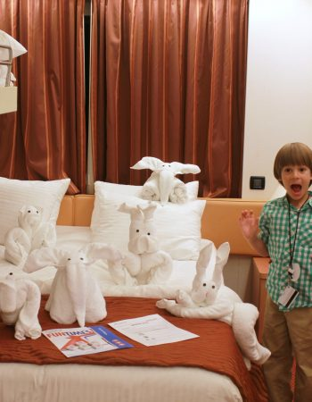 towel animals carnival cruise