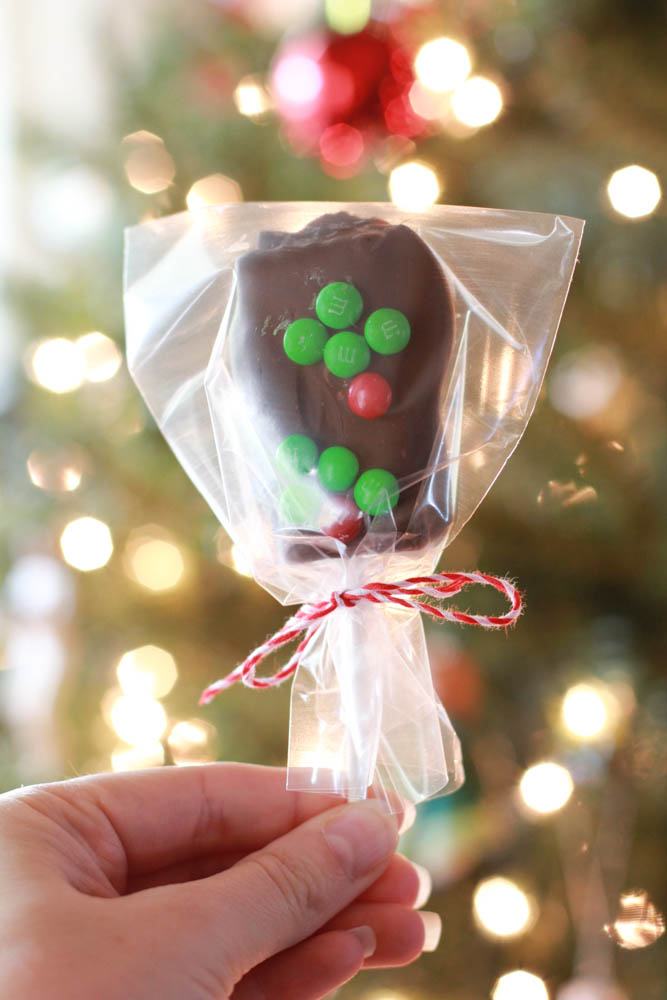 Chocolate Covered S'mores Pops - the perfect holiday inspired treat
