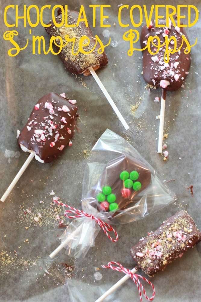 Chocolate Covered S'mores Pops - a delectable holiday inspired treat
