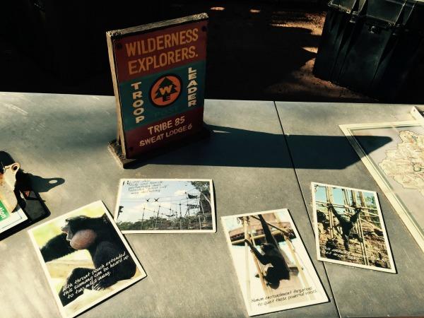Wilderness Explorers Program at Animal Kingdom