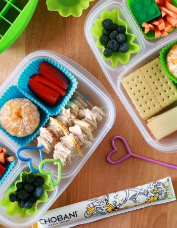 Looking to make bento lunches for your children? I'll tell you what you need to begin making fun, healthy lunches for your children. See my full list of bento lunch supplies that make it easier.