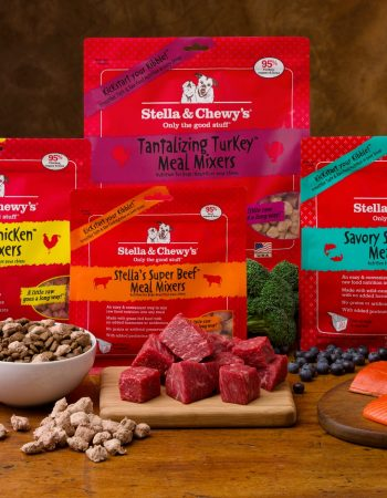 Upgrade your dog's kibble with Stella & Chewy's Raw Dog Food Mixins.
