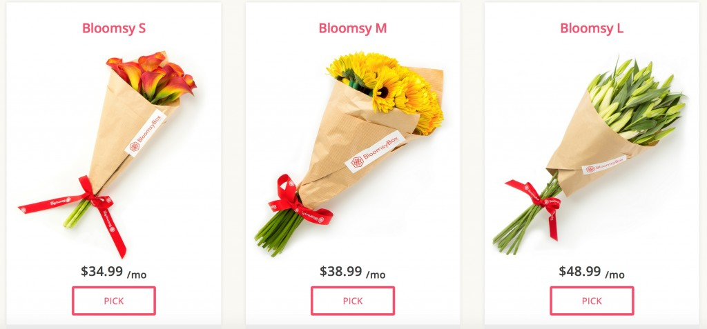 Get beautiful flowers delivered right to your door each month with BloomsyBox, a monthly flower subscription box service.