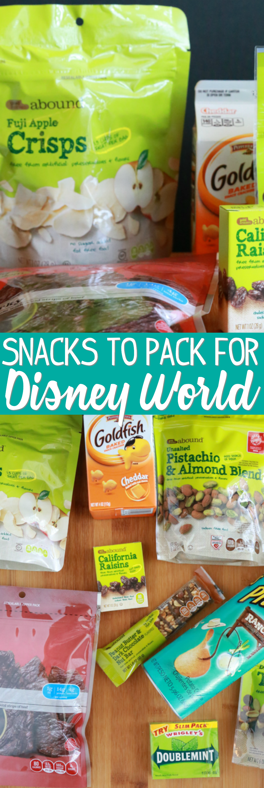 snack ideas for disney world