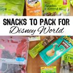 Snacks to Pack for Disney World