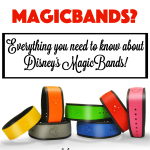 What are MagicBands?