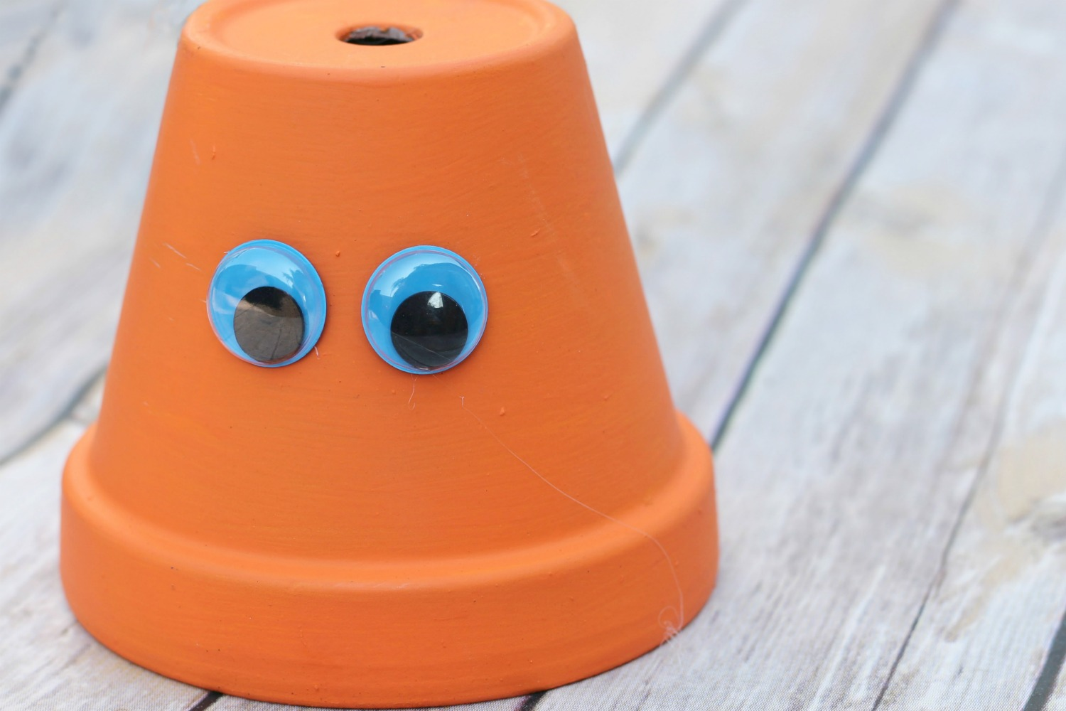 Enjoy the last few days of summer crafting with your children. Start with this fun Finding Dory Hank craft.