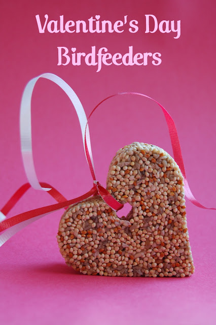 a heart-shaped bird feeder with ribbon to hang it up