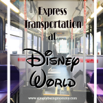 Express Transportation at Disney World – Is it Worth it?