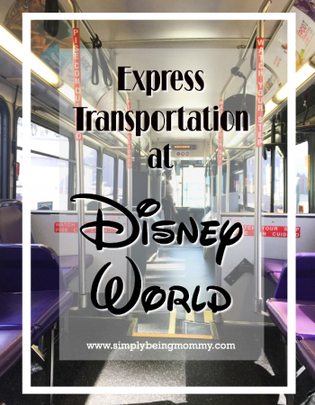 Make the most of your magical Disney vacation with Express Transportation at Disney World. It's the best way to get from park to park.