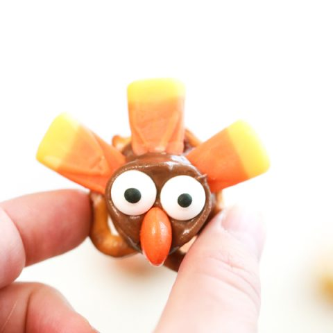 I'm totally in love with these Turkey Pretzel Treats for Thanksgiving. They're adorable, they're tasty, and they're so easy to make.