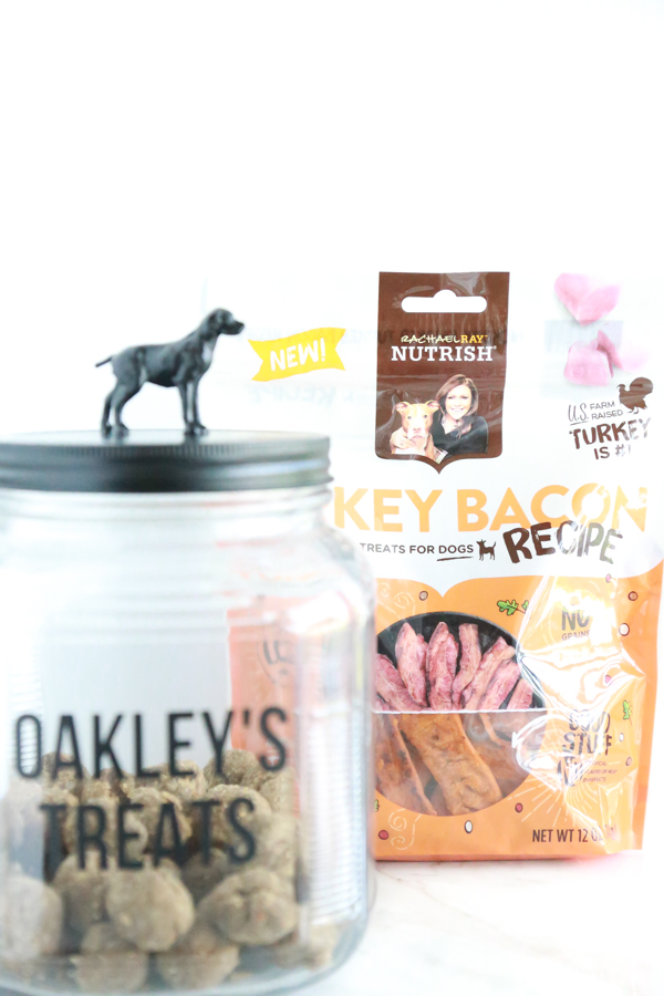 meatball dog treats stored inside of a homemade dog treat jar