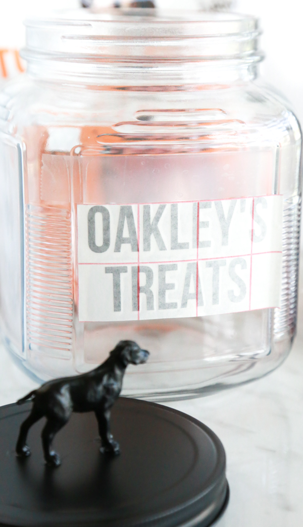 If you're looking for a cute way to store your dog's favorite treats, this Homemade Dog Treat Jar is easy to make and is super cute!
