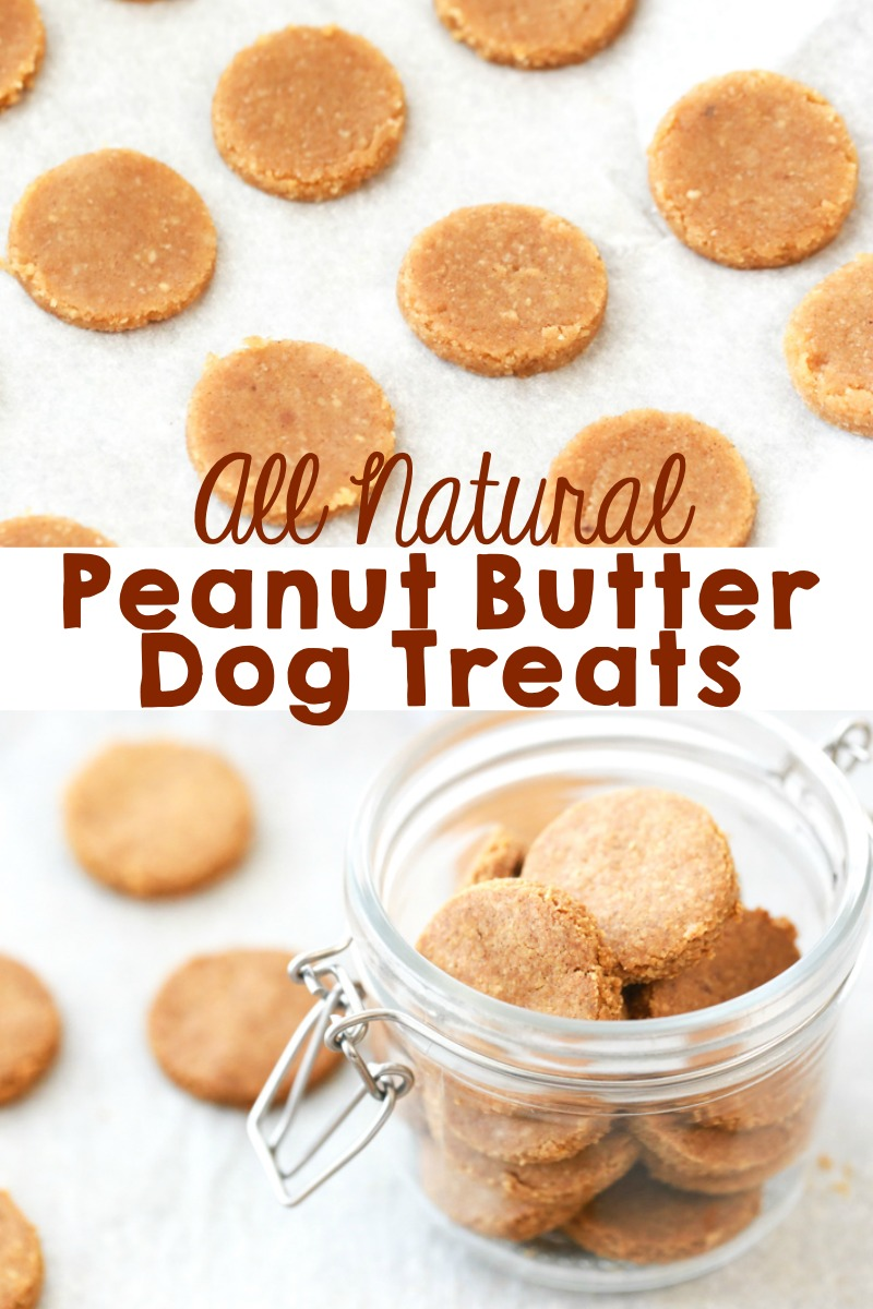 all natural peanut butter dog treat recipe