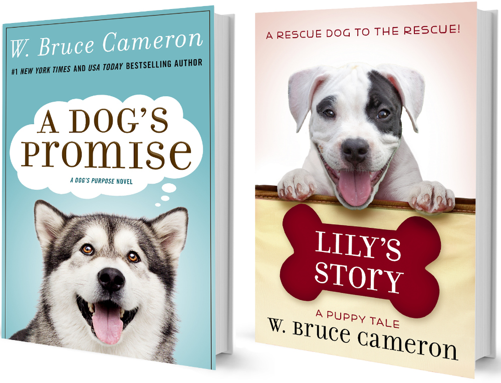 w. bruce cameron book releases
